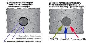 защитный слой бетона препятствует коррозии металлической арматуры в ЖБИ. Под действием кислотообразующих газов и водяных паров бетон теряет щелочные свойства и начинается коррозия металла.